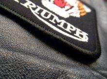 他の写真3: TRIUMPH TIGER PATCH (トライアンフタイガーワッペン)